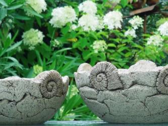 Pflanzschalen Ammonit