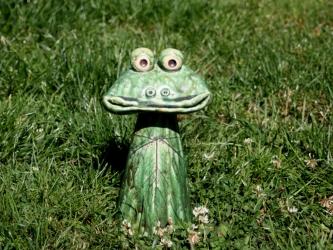 Zaunhocker Frosch Willibald